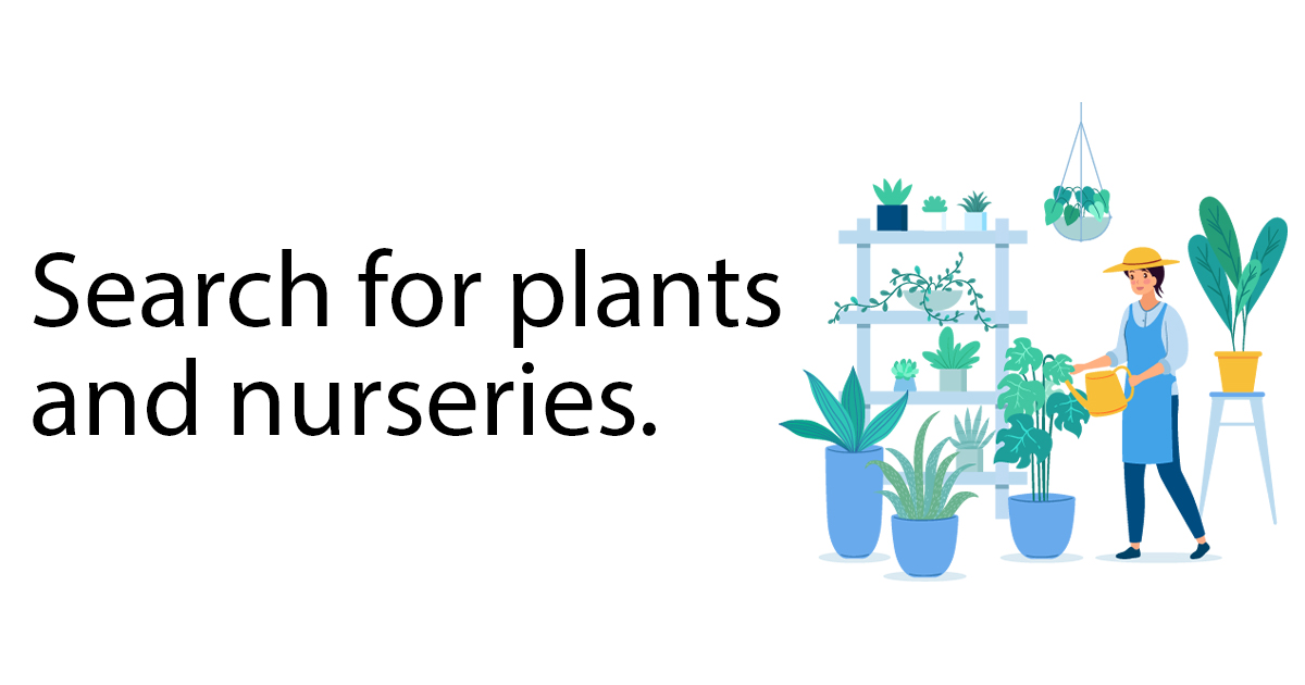 Whole And Retail Plant Nurseries